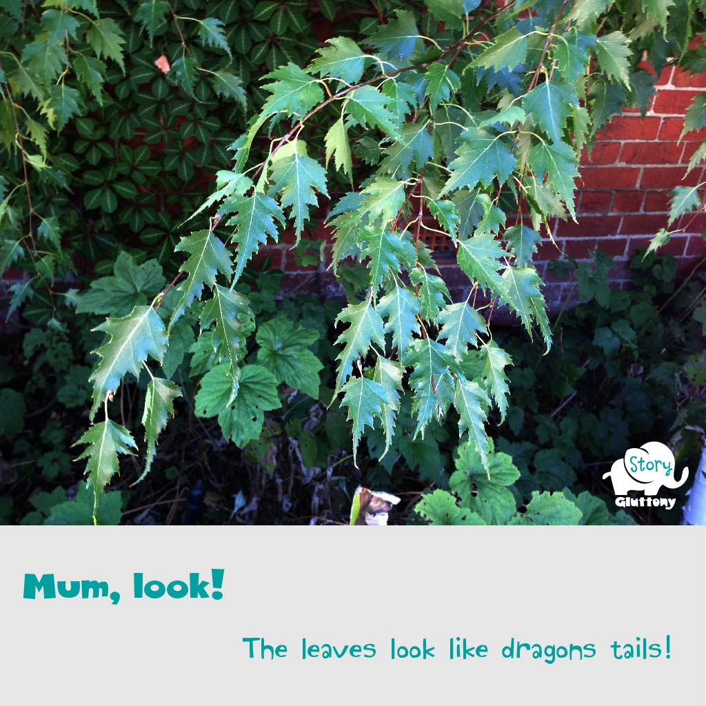 Mum, look! The leaves look like dragons tails!